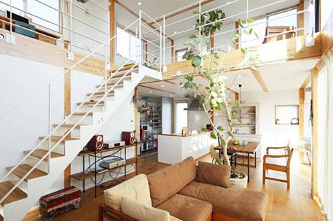 Phòng khách đơn giản với chậu cây to.
